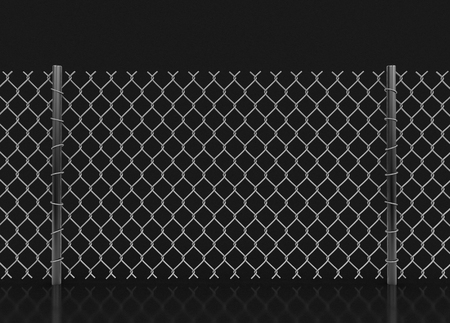 chainlink: chainlink fence