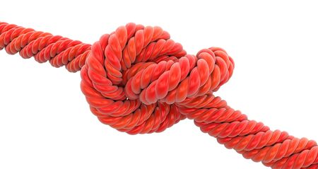 bonding rope: Tied knot. Image with clipping path Stock Photo