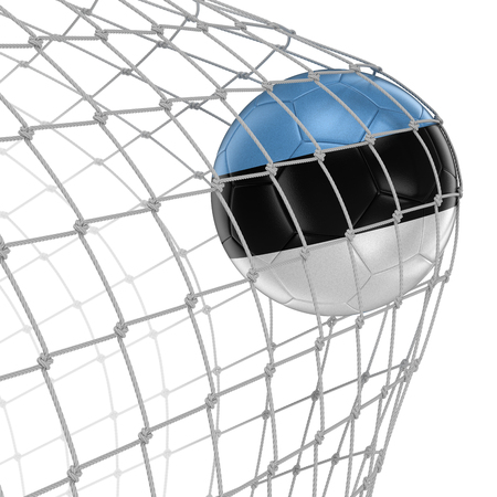 soccerball: Estonian soccerball in net Stock Photo