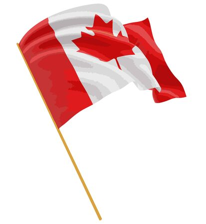 fabric surface: 3D Canada Flag with fabric surface texture Illustration