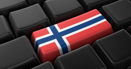 norwegian: Key with Norwegian flag