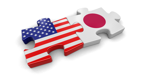 USA and Japan puzzle from flags