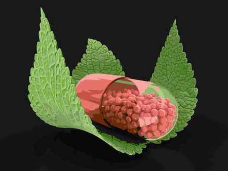 Capsule and leaves. Image
