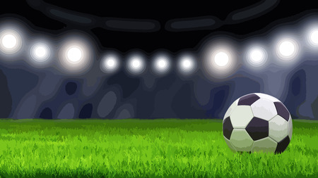 Soccerball on grass Standard-Bild - 96994599