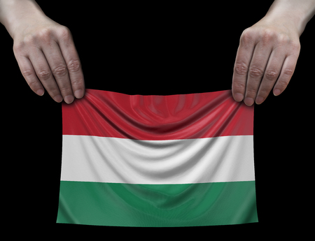 Hungarian flag in hands