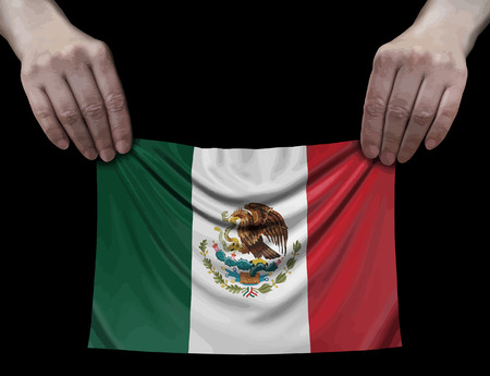 Mexican flag in hands