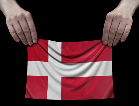 Danish flag in hands