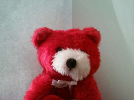 Red and white teddy bear.
