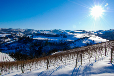 View of Langhe hills with snow, Piedmont - Italy Stock Photo