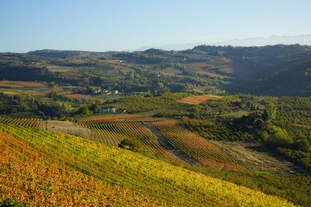 Hills of the Langhe, Piedmont - Italy