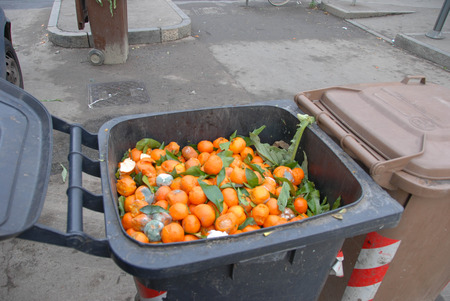 A bin with waste with food waste at the market Stok Fotoğraf - 95902899