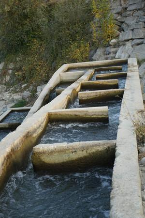 The river Tanaro near Pollenzo, Piemonte-Italy Banco de Imagens - 104547078
