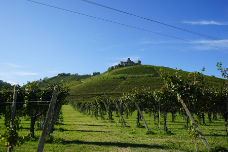 View of Langhe hills with castle of Castiglion Falletto, Piedmont - Italy Banco de Imagens