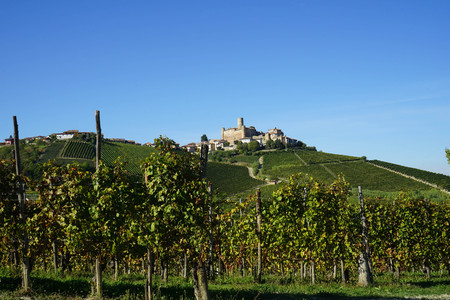 View of Langhe hills with castle of Castiglion Falletto, Piedmont - Italy Editorial