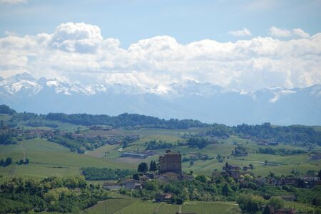 View of Langhe hills with vineyards and the Alps mountains in the background, Piedmont - Italy
