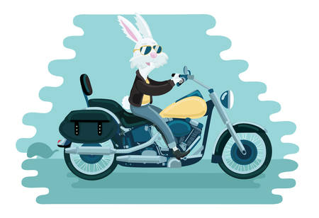 Cartoon vectro illustration of white rabbit ride on a motorcycle on blue background 矢量图像