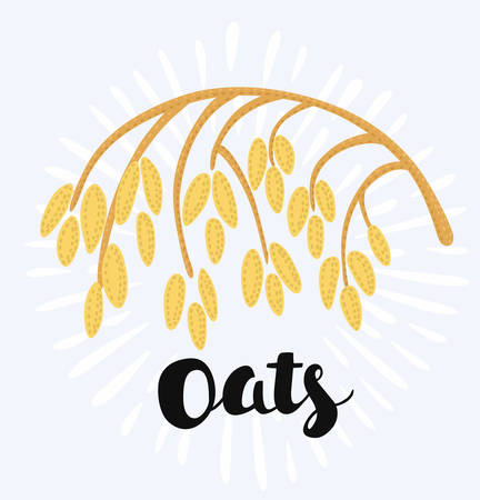 Vector cartoon funny stylizes illustration of spikelet of oat on the white in vintage style. Ilustração