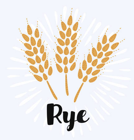 Vector cartoon funny illustration with cartoon rye seeds. Vector cereal isolated icon. Harvesting autumn cartoon background. Gold rye ear with seeds, grain for wheat food or bakery in vintage style
