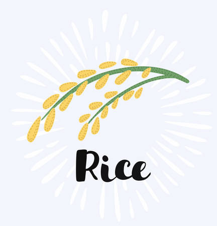 Vector cartoon funny illustration of ear rice. Isolated in vintage style. Hand drawn lettering name Иллюстрация