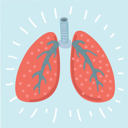 Vector cartoon illustration Lungs icon, flat style. Internal organs of the human design element, logo.