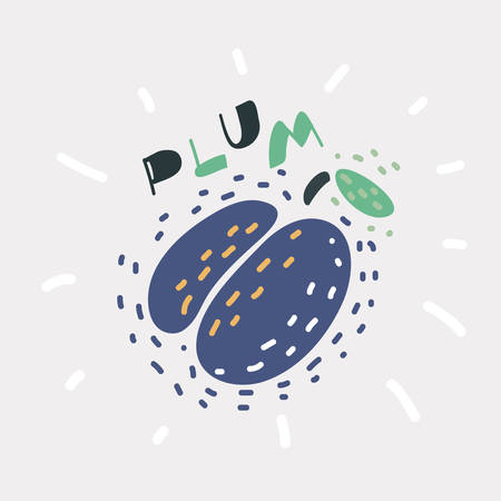 Vector cartoon illustratio of Plum. Scetchy hand drawing made. Blue fruit, green leaf, branch isolated on white background. Hand drawn object and lettering.