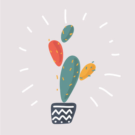 Vector illustration of the prickly pear cactus on white background.