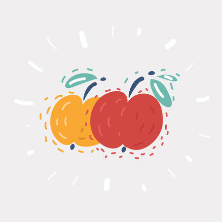 Cartoon vector illustration of Apple Red and Yellow apples on white. 向量圖像