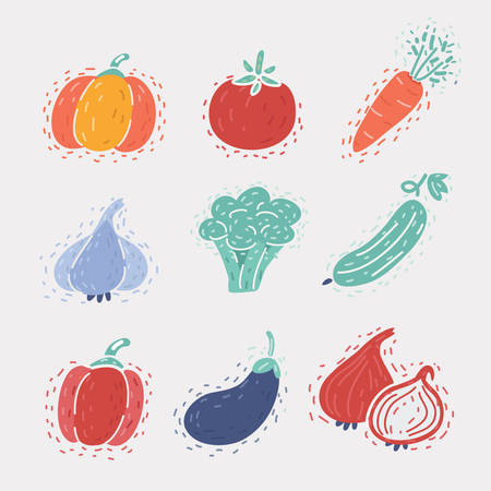 Cartoon vector illustration of set of icons of vegetables. Icons isolated on white background. Pumpkin, tomato, broccoli, carrots, garlic, cucumber, pepper, eggplant, onion 向量圖像