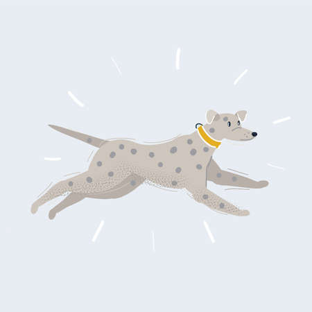 Vector illustration of running dalmatian on white background.