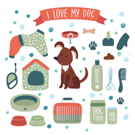 Illustration set of accessories for dog