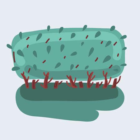 Vector illustration of green bush on white background