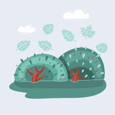 Vector illustration of a green bush. Illusztráció