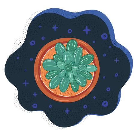 Vector illustration of plant on dark backround.
