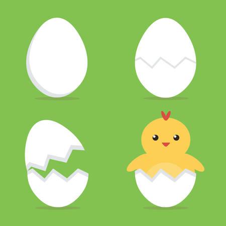 polluelo del bebé que trama del huevo del proceso. ilustración vectorial diseño plano.