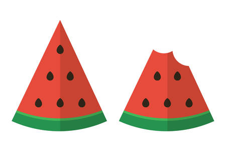 nibbled: Flat design two slices of watermelon. Cutted watermelon. Nibbled watermelon.