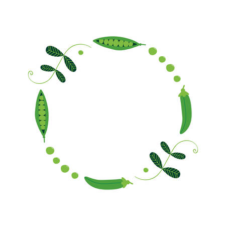 Green peas, garden peas with leaves and pods vector round frame, background.