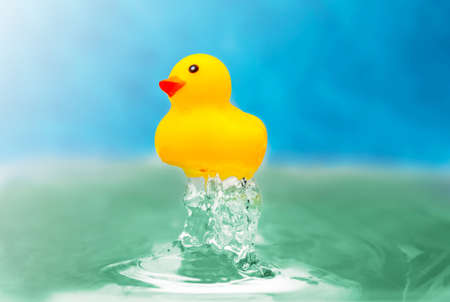 yellow toy duckling in blue wather