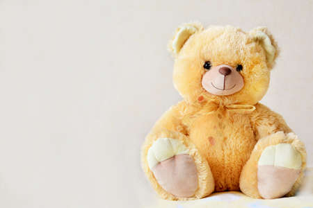Bear toy on light beige background