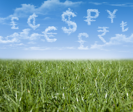 World currency units shaped clouds on green grass Stock Photo