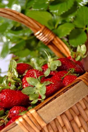 seasonal: Seasonal fresh strawberries in the basket Stock Photo
