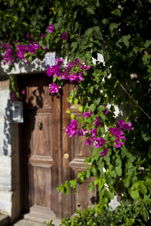 characteristic: Characteristic house door of beautiful tourism city Bodrum