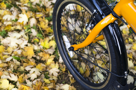 Orange folding bike at the forest on autumn day. Stock Photo - 65219087