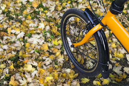 Orange folding bike at the forest on autumn day. Stock Photo - 65219091
