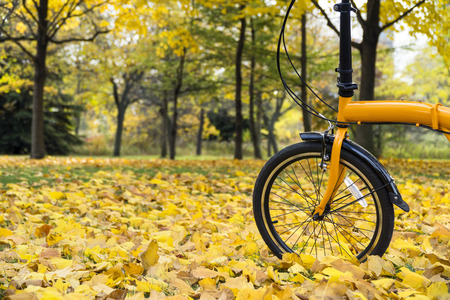 Orange folding bike in the forest an autumn day Stock Photo - 69639794