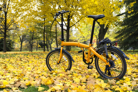 Orange folding bike in the forest an autumn day Stock Photo