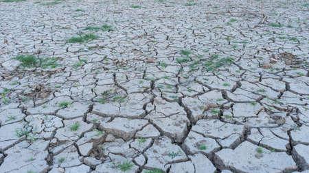 Las zonas áridas del país debido a los desastres naturales