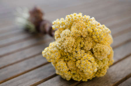 image of immortelle bouquet on wooden table Standard-Bild