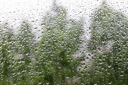 rainy day: rain drops on window pane with blurred trees in the background