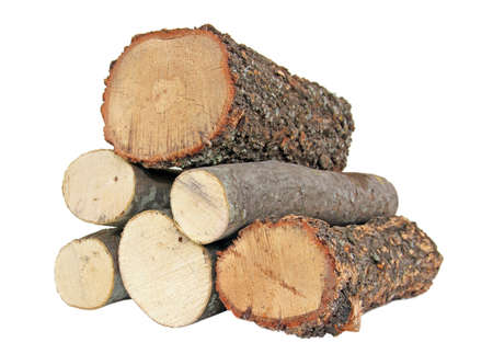 six logs isolated on white