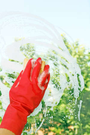 window cleaning: hand in glove is cleaning a window